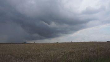 burza nad uprawami